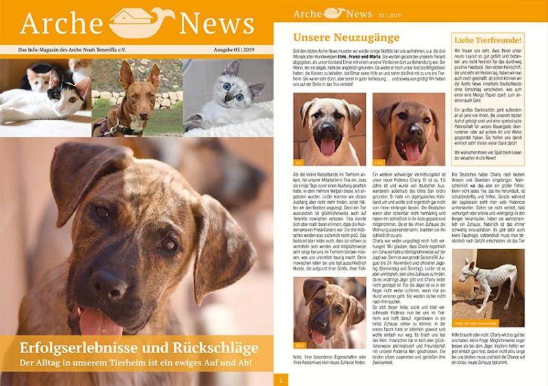 Info-Magazin