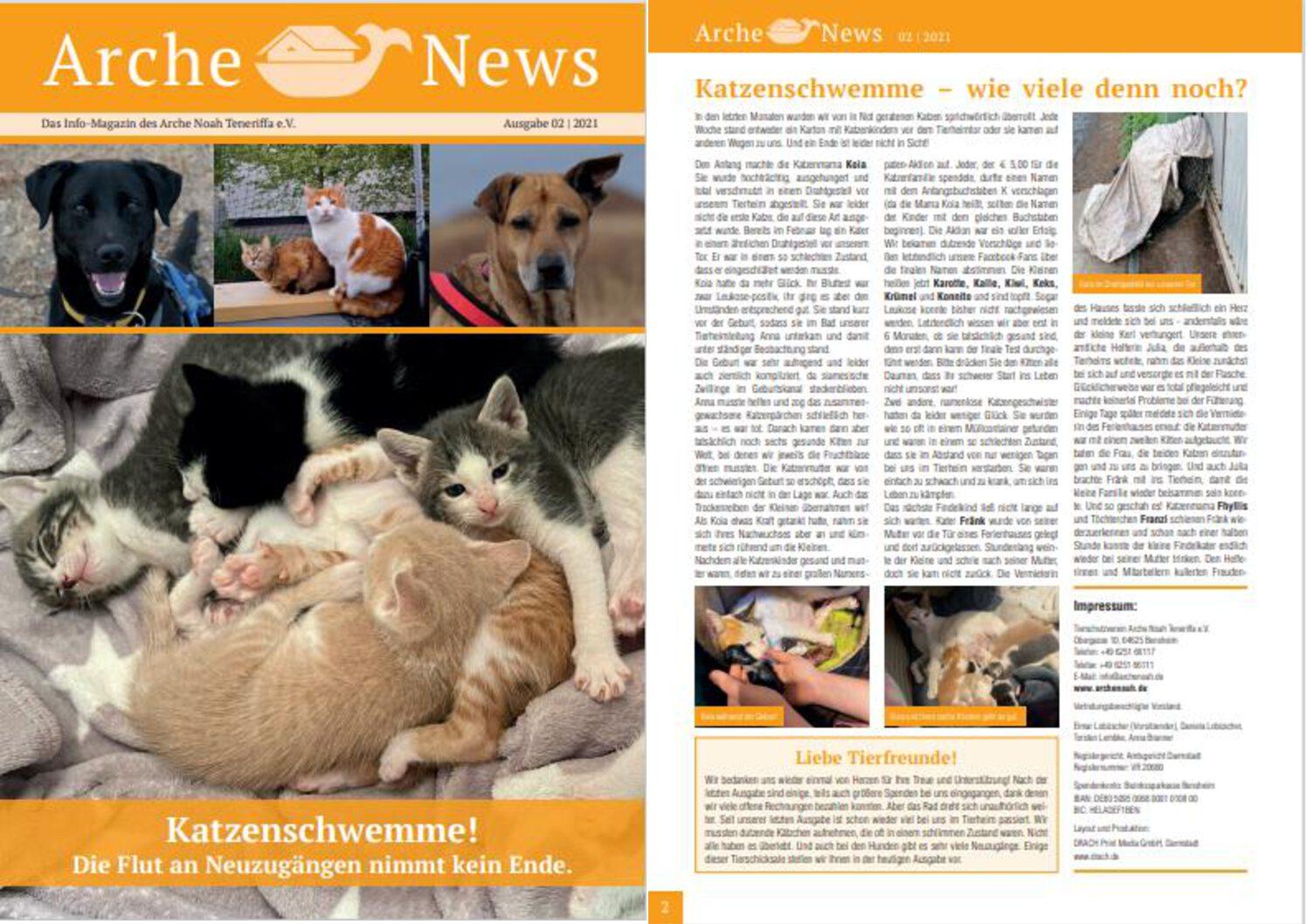 Die neuen Arche News sind da!